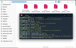 Instalación de Linux desde la terminal (avanzado)