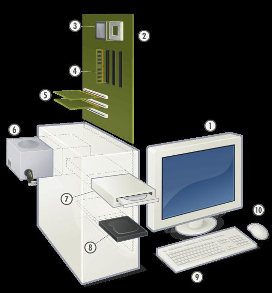 Ilustración de las partes de la computadora